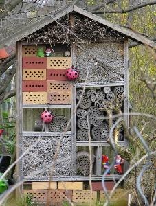 Insektenhotel in Kleingartenanlage