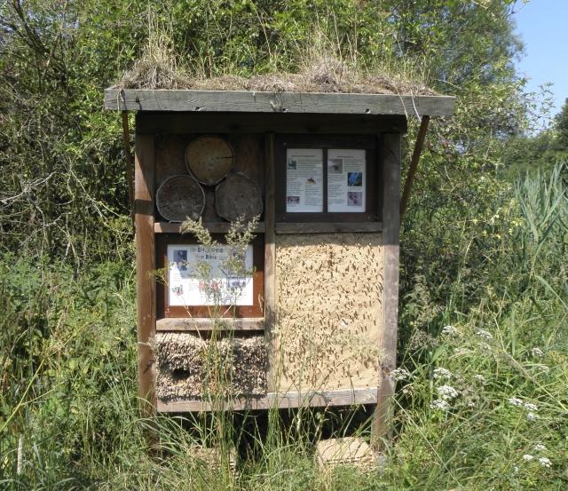 Insektenhotel im Naturschutzgebiet Höltigbaum in Hamburg